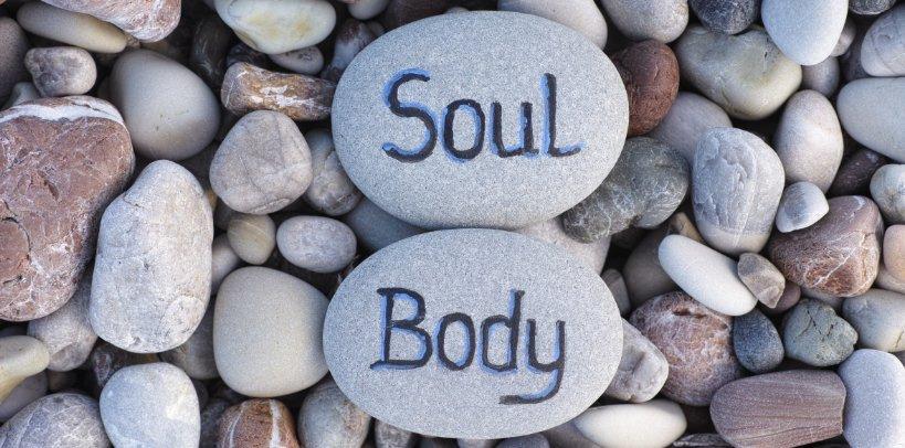 tipos de alma